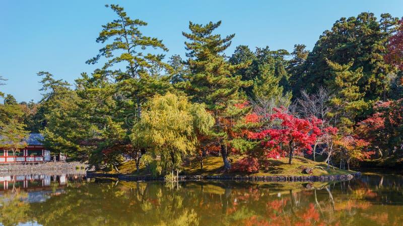 Jardim na frente do templo de Todaiji em Nara foto de stock royalty free