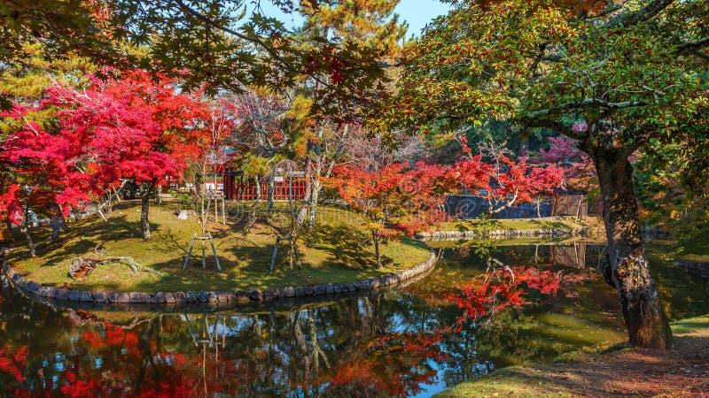 Jardim na frente do templo de Todaiji em Nara imagens de stock royalty free