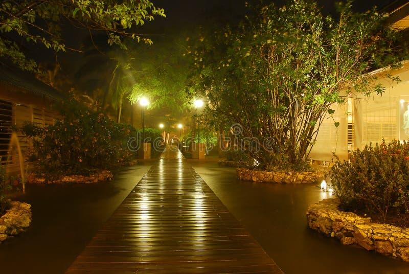 Jardim na noite foto de stock royalty free