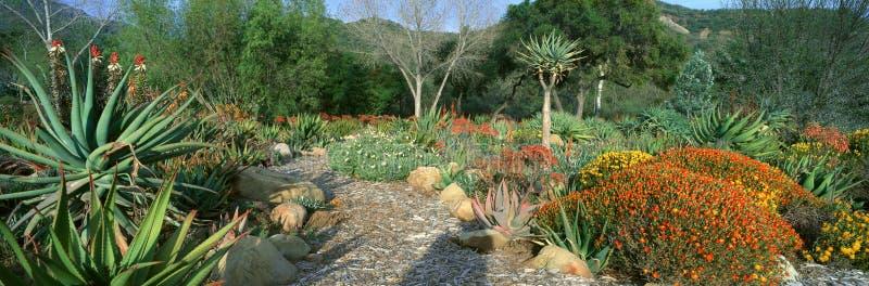 Jardim no centro para interesses da terra foto de stock royalty free