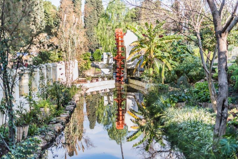 Jardim no fez, Marrocos fotos de stock