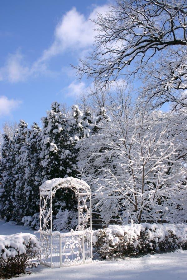 Jardim no inverno fotos de stock royalty free