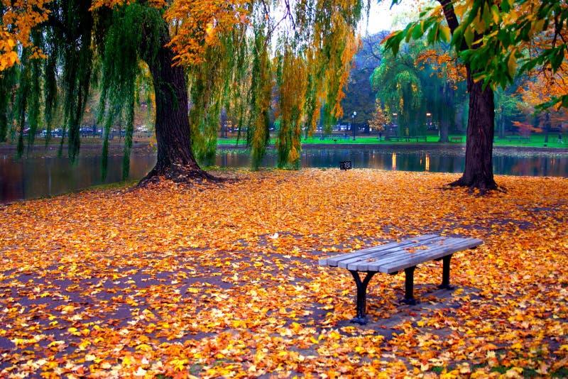 Jardim público de Boston imagem de stock