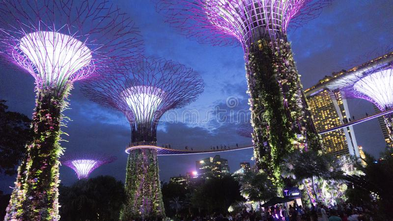 Jardim pela ba?a em singapore foto de stock royalty free