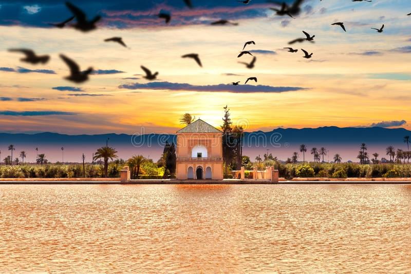 Jardim Scenical de Menara Curso a Marrocos C4marraquexe fotos de stock royalty free