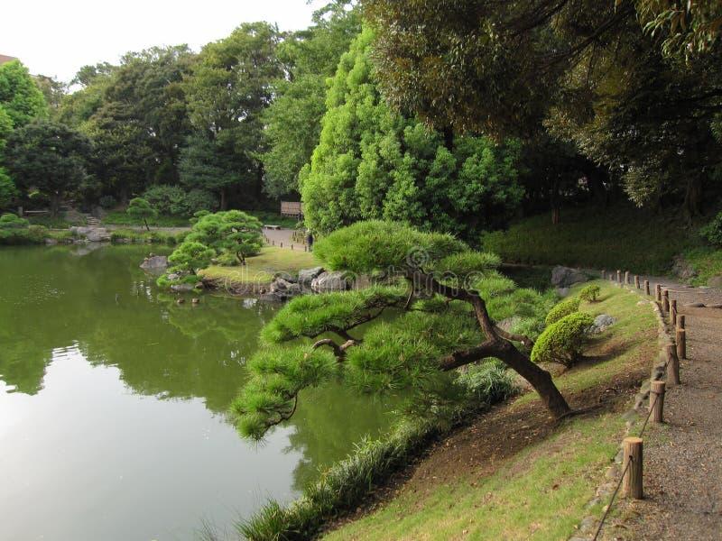 Jardim tradicional da caminhada do japonês com lagoa foto de stock royalty free