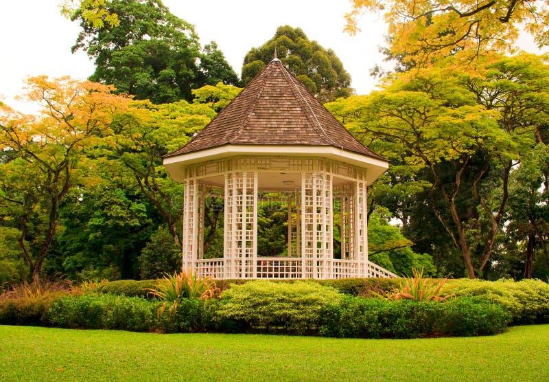 Jardim tropical foto de stock