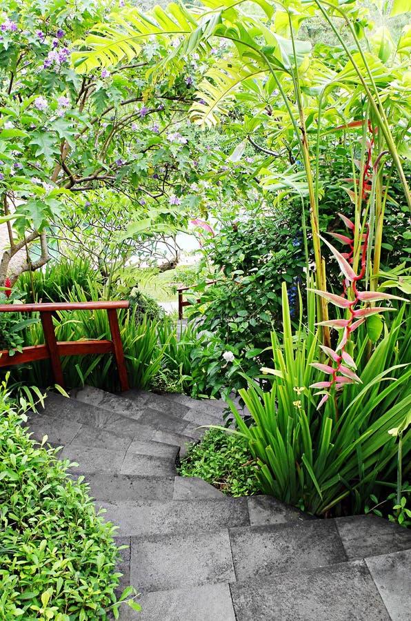 Jardim tropical ajardinado com trajeto fotografia de stock royalty free