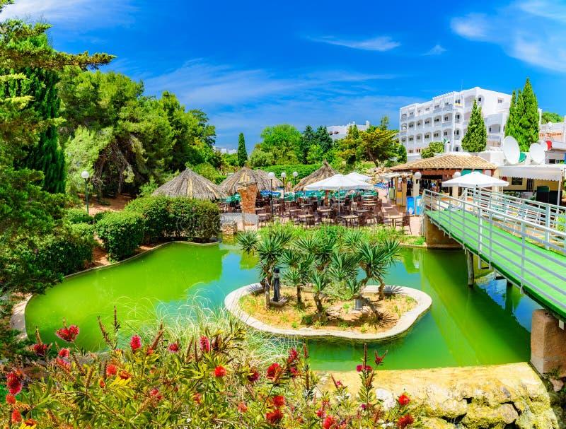 Jardim tropical exótico na ilha de Palma de Mallorca, Espanha fotografia de stock