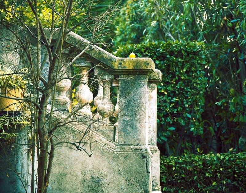 Jardim verde em France imagens de stock