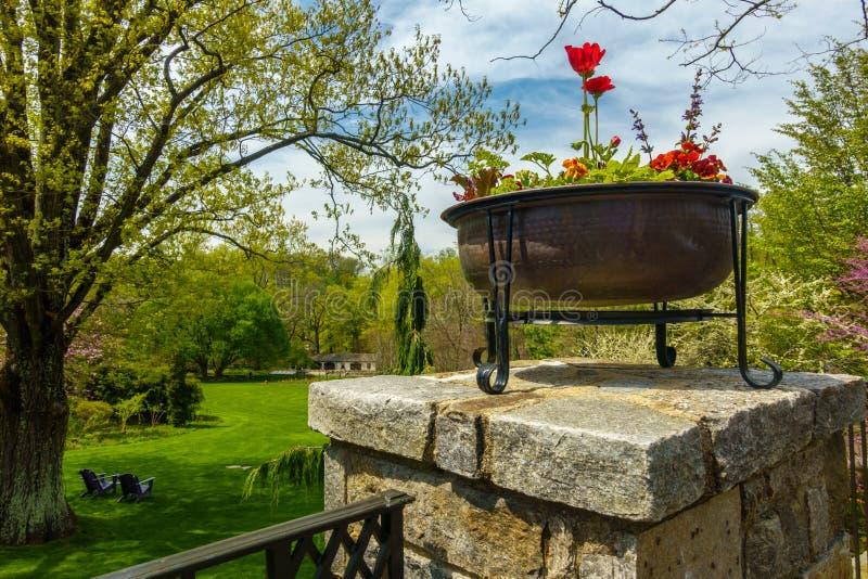 Download Jardim verde luxúria imagem de stock. Imagem de flor - 80101087