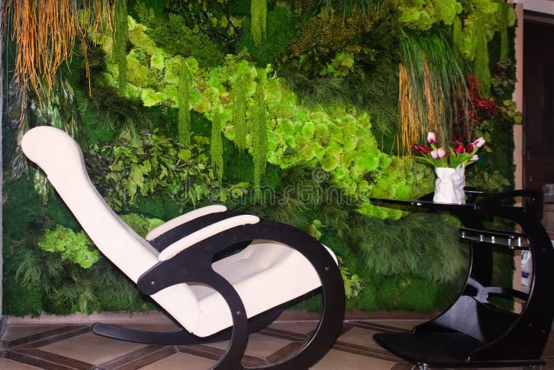Jardim vertical de vida da parede verde Design de interiores da casa imagens de stock