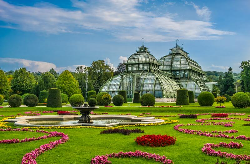 Jardim Viena de Palmengarten Schobrunn fotografia de stock royalty free