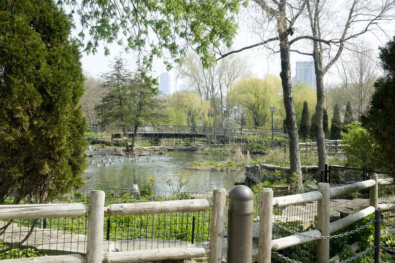 Jardim zoológico do parque de Lincoln imagens de stock royalty free
