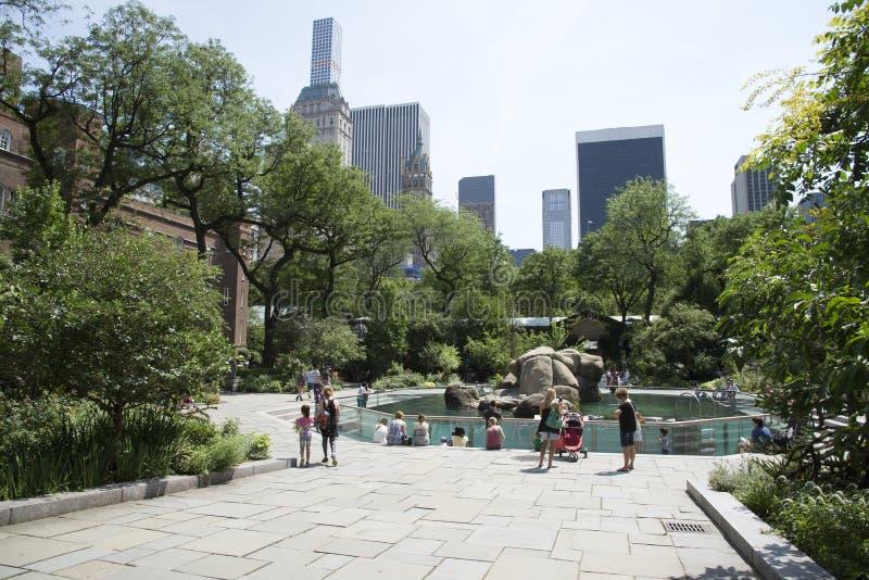 Jardim zoológico New York EUA do parque dos centro imagens de stock