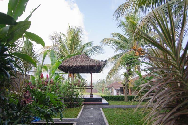 Jardin étonnant d'arrière-cour dans Bali photo libre de droits