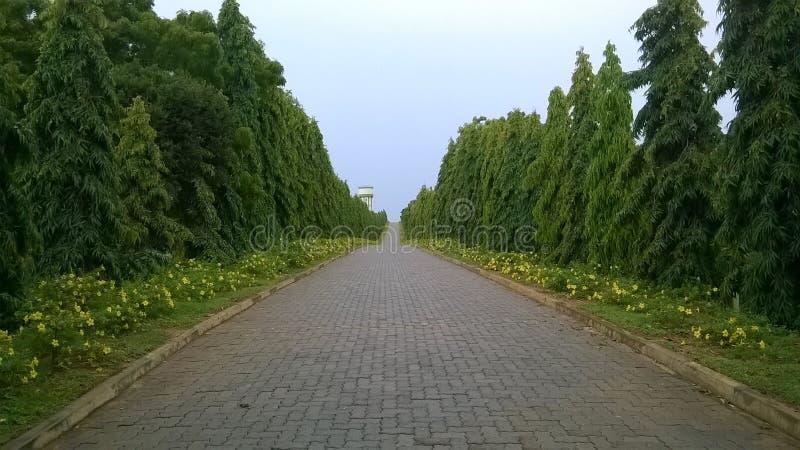 Jardin photographie stock