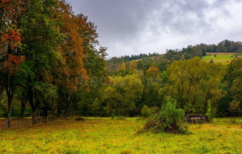 Jardin abandonné par temps flou d'automne photo libre de droits