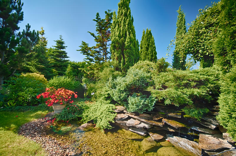 Jardin abondant photo libre de droits