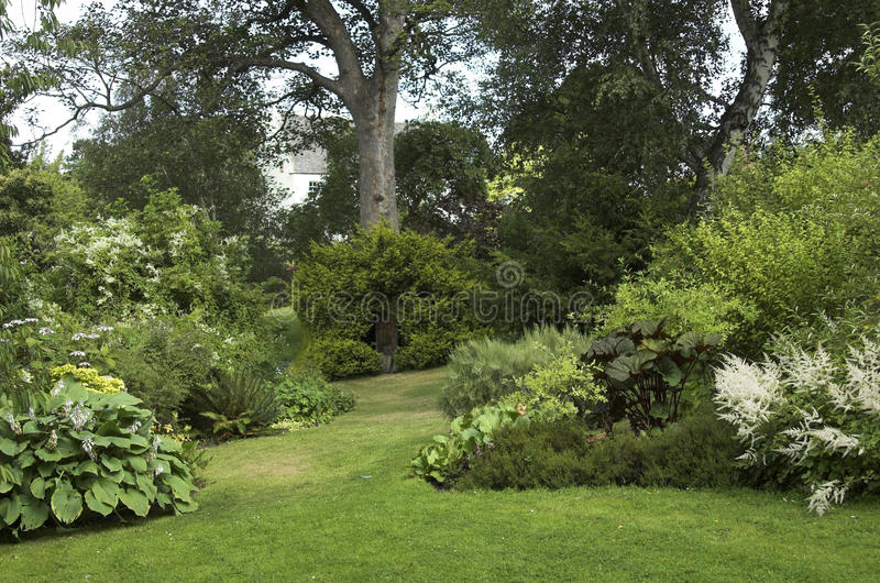 Jardin aménagé en parc avec des arbustes d'arbres photos libres de droits