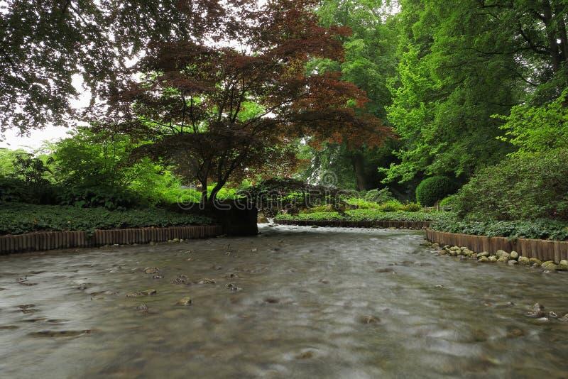 Jardin aménageant la crique en parc image stock