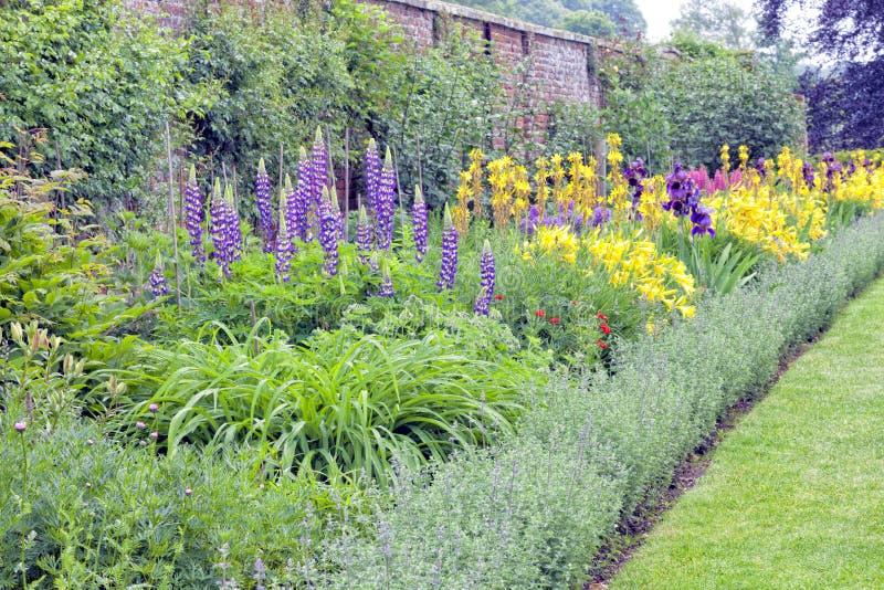 Jardin anglais avec des fleurs, herbes s'élevant par le mur de briques photos stock