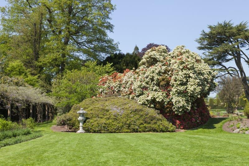 Jardin Anglais Coloré Avec Des Fleurs, Arbres, Arbustes Photo stock ...