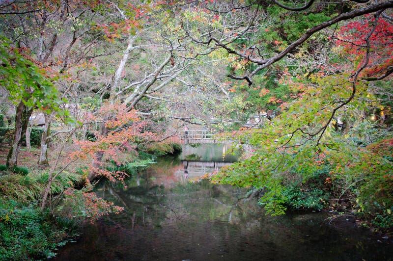 Jardin au Japon image libre de droits