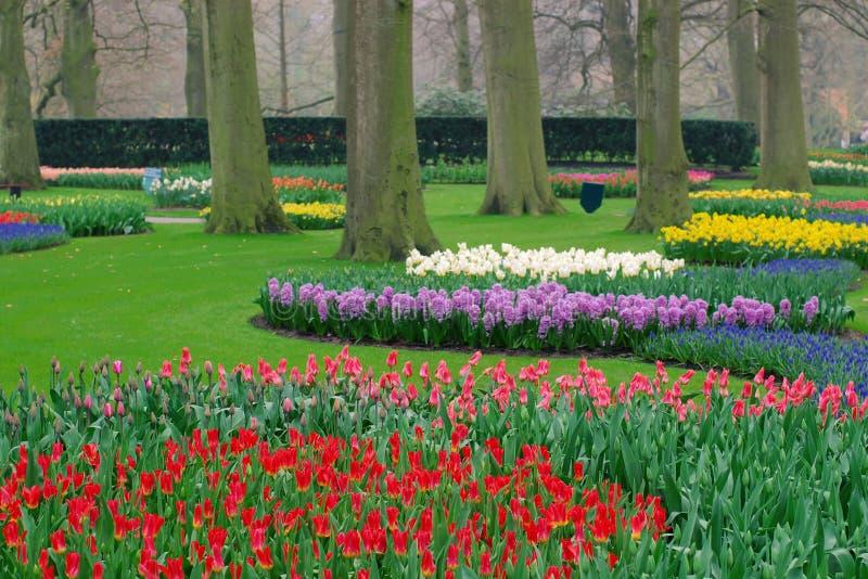 Jardin au printemps image libre de droits