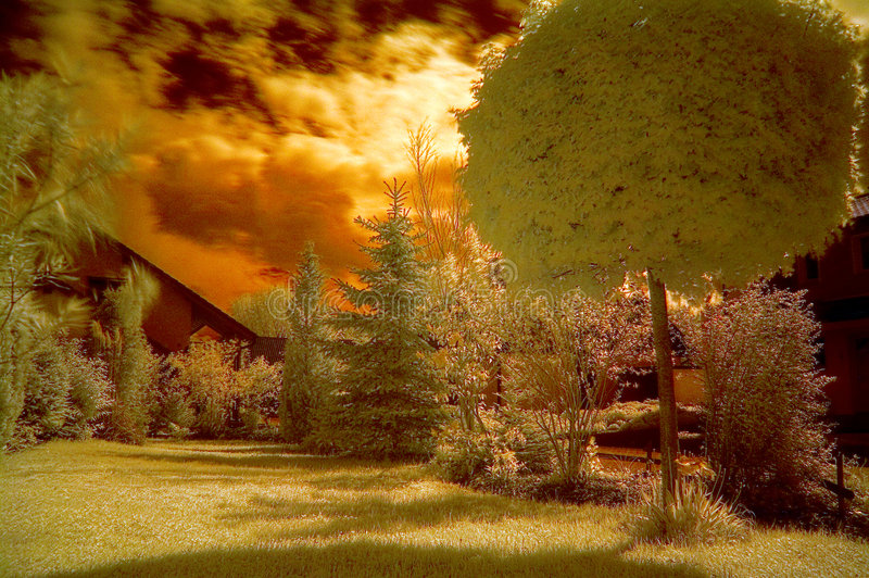Jardin avant photos libres de droits