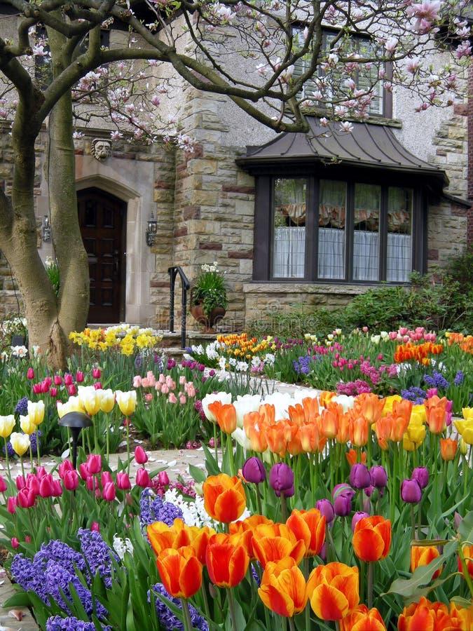 Jardin avec des fleurs de source photo stock
