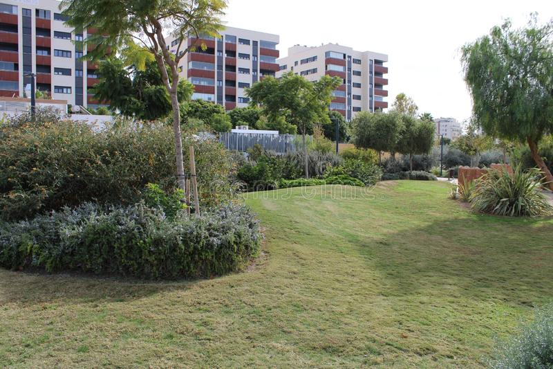 Jardin avec les usines et la pelouse d'arbres photographie stock