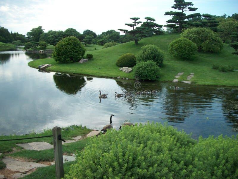 Jardin botanique photos stock