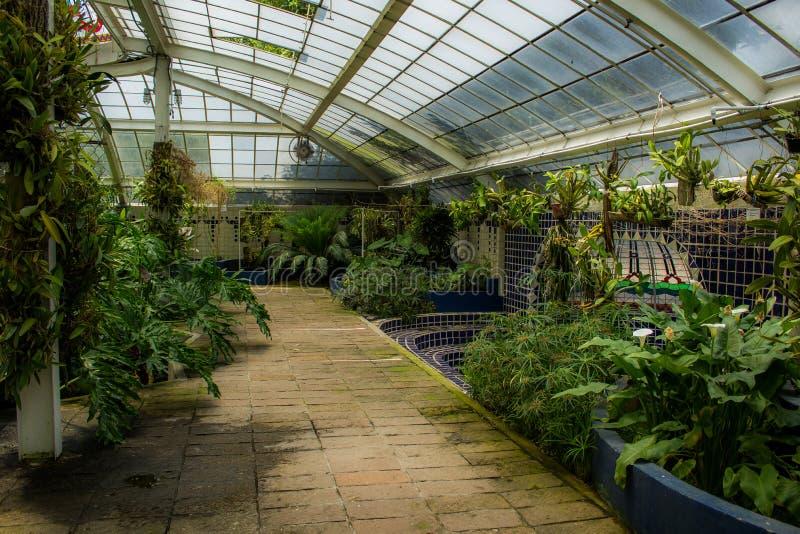Jardin botanique photographie stock