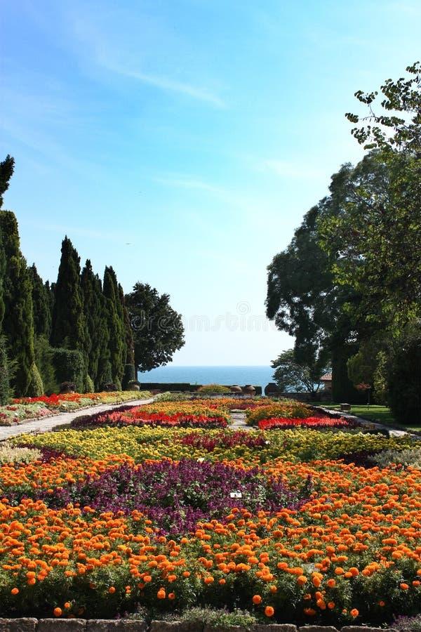 Jardin botanique avec les fleurs et la mer images libres de droits
