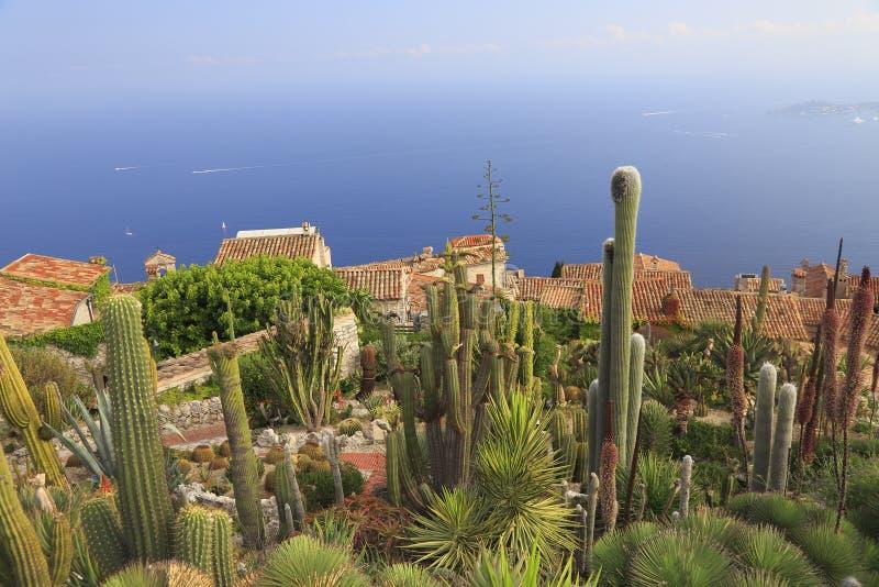Jardin botanique d ` Eze,用在前景的各种各样的仙人掌,鸟瞰图,法国海滨 免版税库存图片