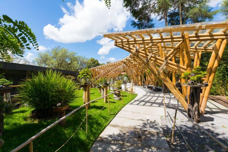 Jardin botanique dans la région de Japonais de Quito photos libres de droits