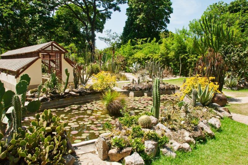Jardin botanique dans le Rio de Janeiro photo stock