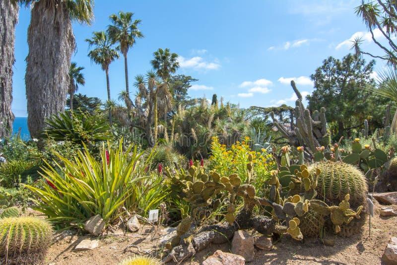 Jardin botanique de Marimurtra à Blanes près de Barcelone, Espagne photo libre de droits