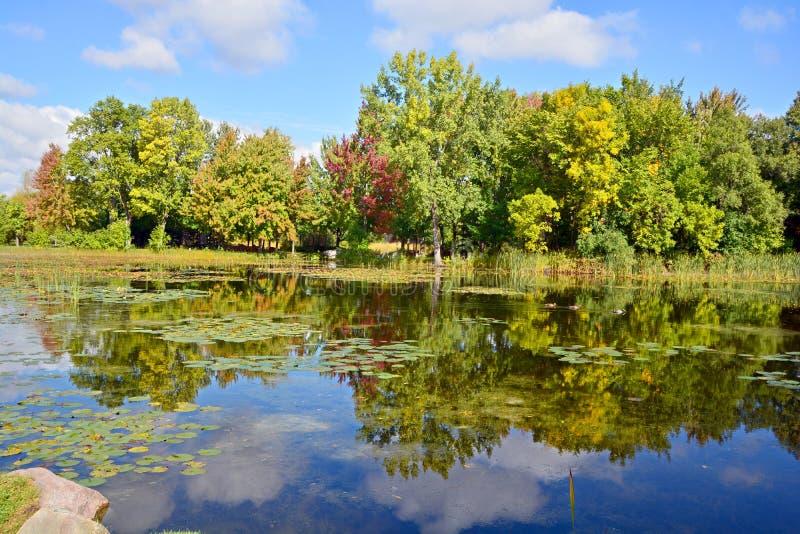 Jardin botanique de Montréal image stock