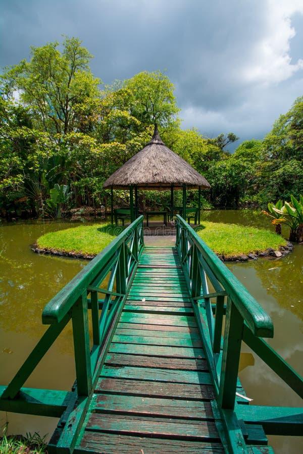 Jardin botanique Pamplemousses, Îles Maurice photographie stock