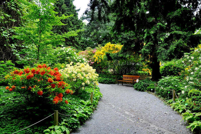 Jardin botanique, Silésie inférieure images libres de droits