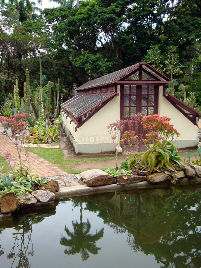 Jardin botanique tropical photos libres de droits