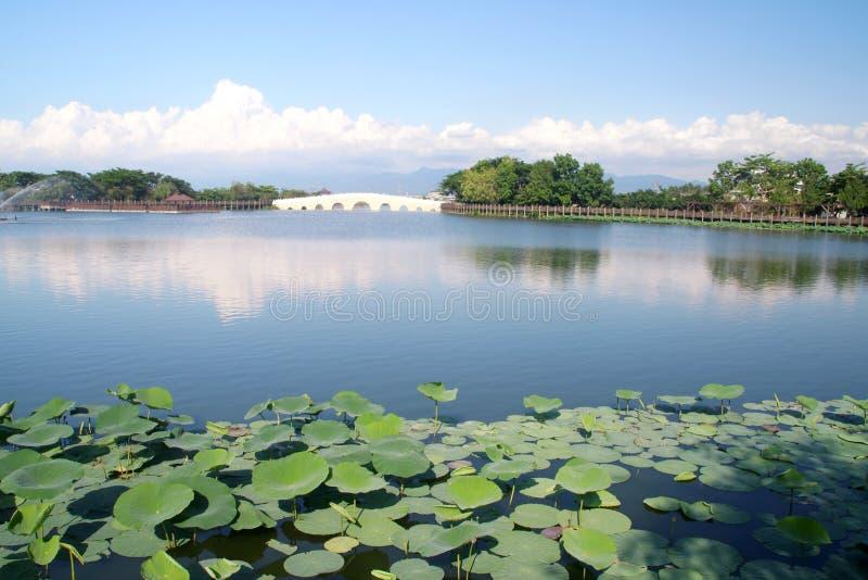 Jardin chinois photos stock