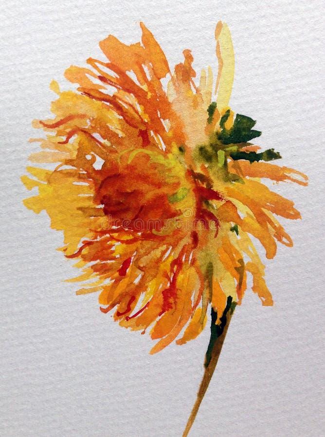 Jardin coloré de dahlia de fleur de fond d'art d'aquarelle illustration libre de droits