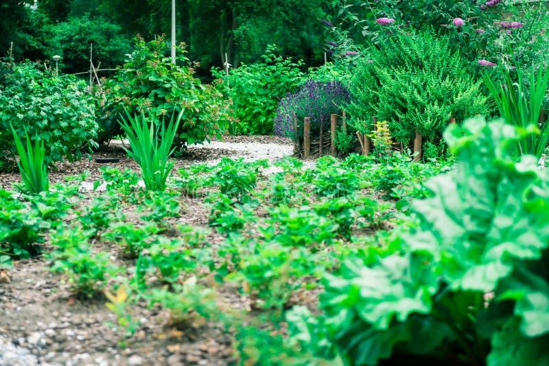 Jardin communal de ville image stock
