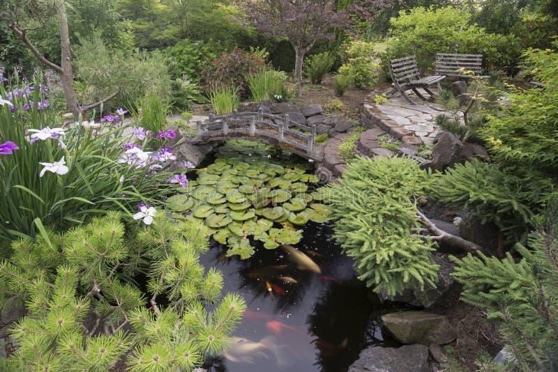 Jardin d'étang de Koi photos stock