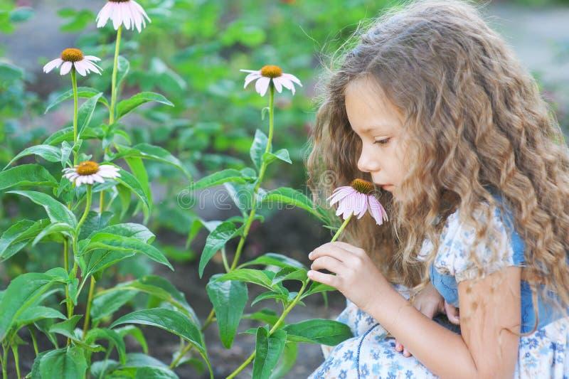 Jardin d'agrément sentant de petite fille photographie stock libre de droits