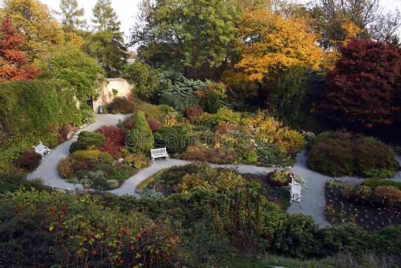 Jardin d'automne photo libre de droits