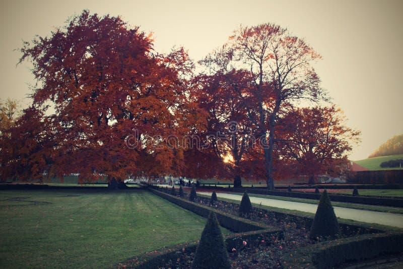 Jardin d'automnes photographie stock libre de droits